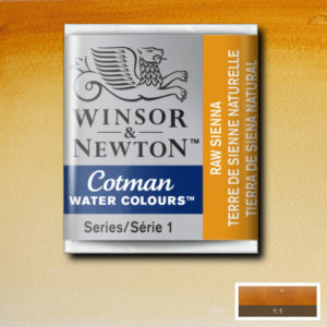 Acquerelli Cotman Winsor & Newton 1/2 godet