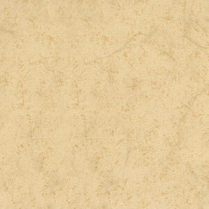 Carta pergamena 50×70 – da 110gr